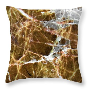 Interspace Web Throw Pillow