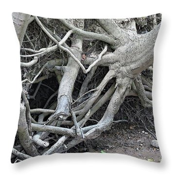 Intertwined Throw Pillow by Sandra Church