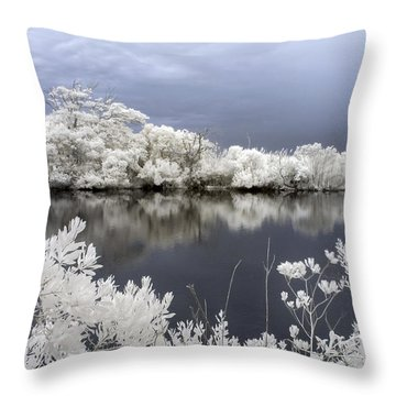 Intimate Lake In Infrared Throw Pillow