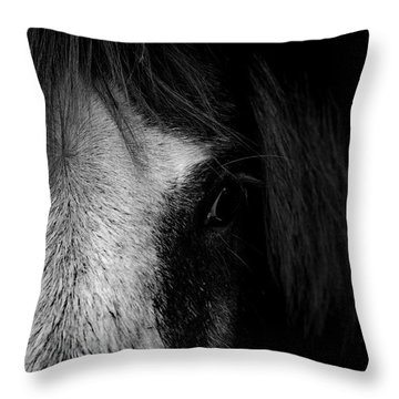 Intimate  Throw Pillow