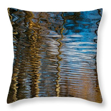 Throw Pillow featuring the photograph Into Chaos Blue by Tom Vaughan