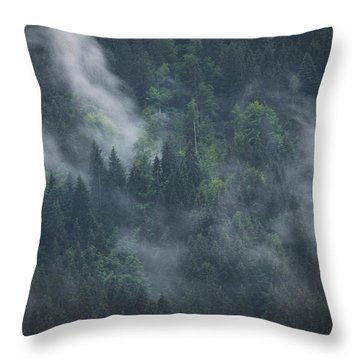 Into Deep Forest Throw Pillow