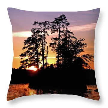 Into Shadow Throw Pillow