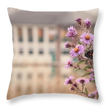 Throw Pillow featuring the photograph Into The Asters by Viviana  Nadowski