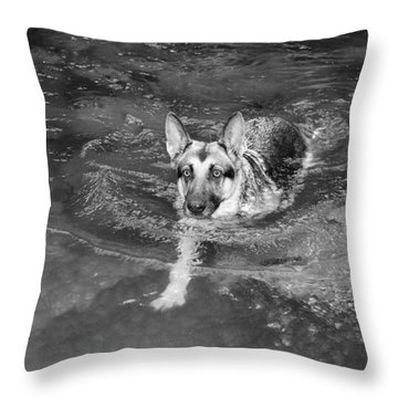 Into The Cold Throw Pillow