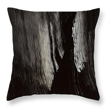 Into The Dark  Throw Pillow by Nadalyn Larsen