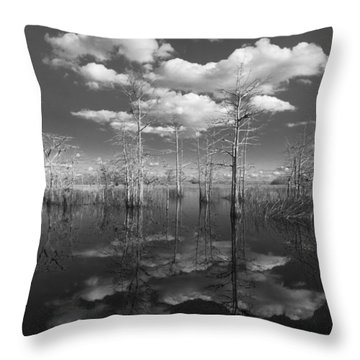 Into The Everglades Throw Pillow by Debra and Dave Vanderlaan