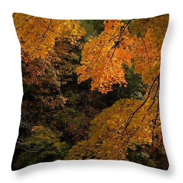 Into The Fall Throw Pillow by Michael McGowan