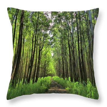 Throw Pillow featuring the photograph Into The Forest by DJ Florek