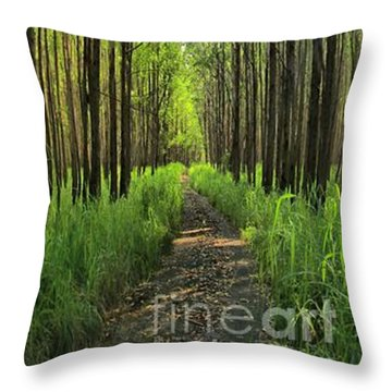 Throw Pillow featuring the photograph Into The Forest I Go by DJ Florek