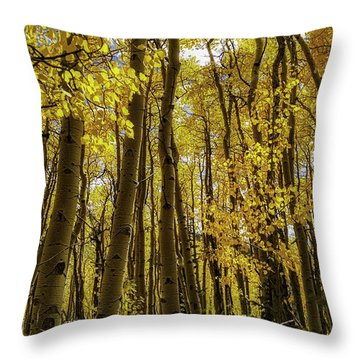Into The Gold Throw Pillow