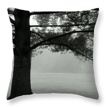 Into The Grey Wide Open Throw Pillow