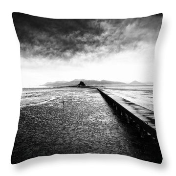 Into The Landscape Throw Pillow