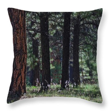 Into The Light There Be Shadows Throw Pillow