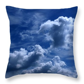 Into The Light  Throw Pillow by Tom Druin