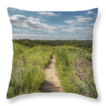 Into The Loess Hills Throw Pillow