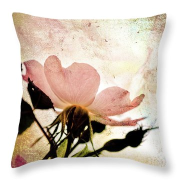Throw Pillow featuring the photograph Into The Mystic by Elaine Manley