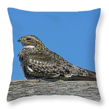 Throw Pillow featuring the photograph Into The Out by Tony Beck