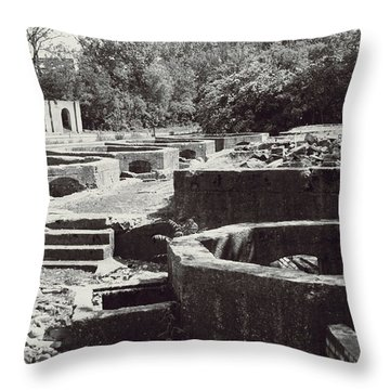 Into The Ruins 1 Throw Pillow