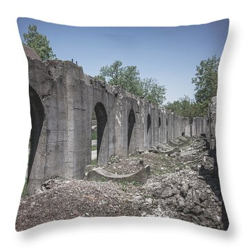 Into The Ruins 2 Throw Pillow