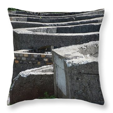 Into The Ruins 3 Throw Pillow