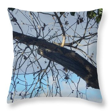 Tree Leaves Into The Sky Throw Pillow