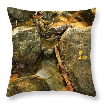 Into The Stream 13  Throw Pillow