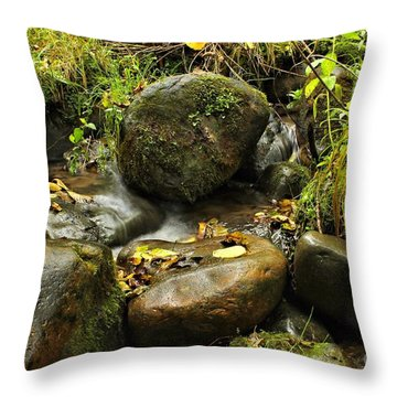 Into The Stream 4 Throw Pillow