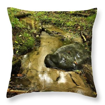 Into The Stream 8 Throw Pillow