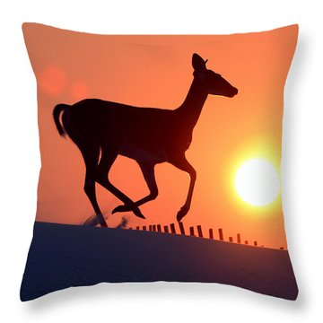 Into The Sunset Throw Pillow by Scott Mahon