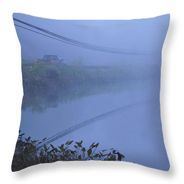Into The Unknown Throw Pillow by Karol Livote