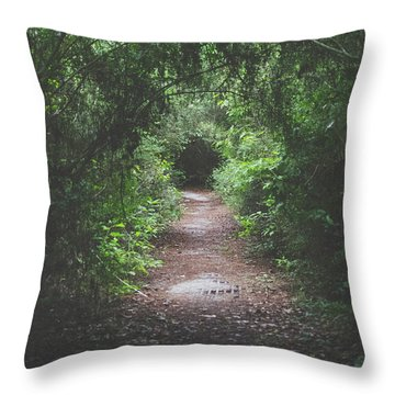 Into The Wormhole Throw Pillow