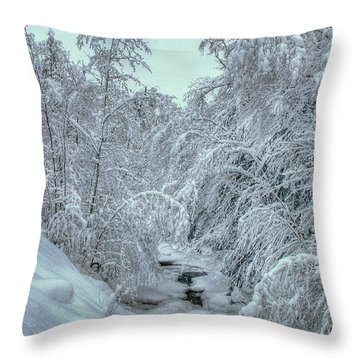 Throw Pillow featuring the photograph Into White by Wayne King