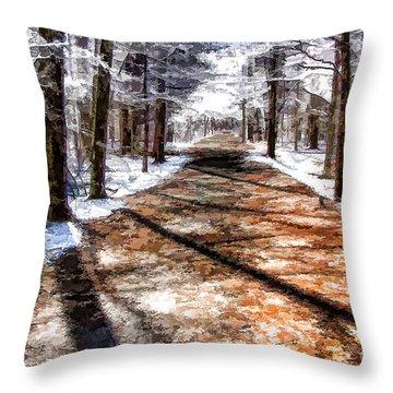 Into Winter Throw Pillow
