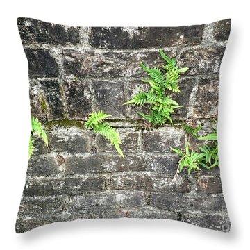 Intrepid Ferns Throw Pillow