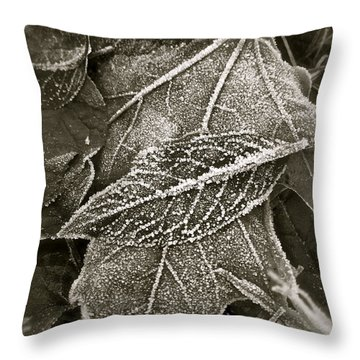 Intricately Frosted Throw Pillow by Gwyn Newcombe