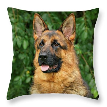 Intriguing Ida Throw Pillow