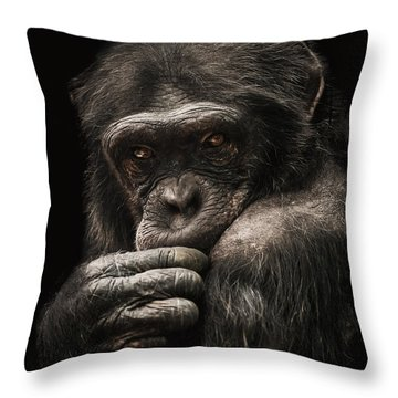 Introvert Throw Pillow by Paul Neville