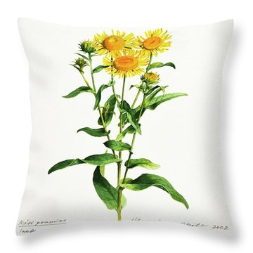 Inula Throw Pillow