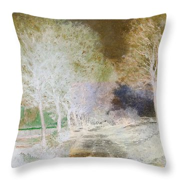 Inv Blend 4 Sisley Throw Pillow by David Bridburg