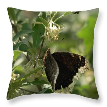 Throw Pillow featuring the photograph Invasion Of Space by Susan Capuano