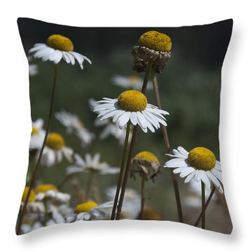 Invasive Throw Pillow