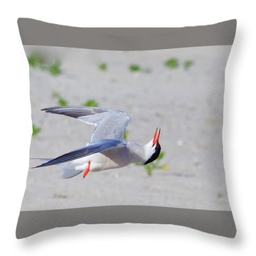 Inverted Flight Throw Pillow