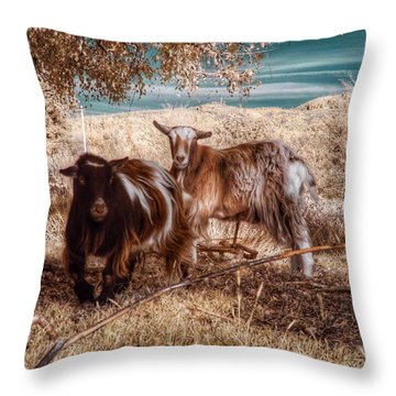 Throw Pillow featuring the photograph Invisible Lives by Chriss Pagani