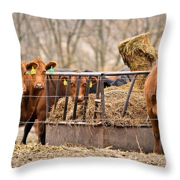 Invitation Only Throw Pillow