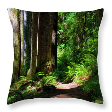 Inviting Hike Throw Pillow