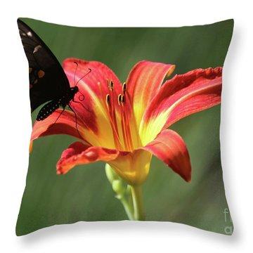 Inviting Throw Pillow by Sabrina L Ryan
