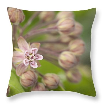 Inviting The Monarch Throw Pillow