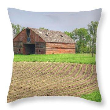 Iowa Corn Sprouts Throw Pillow