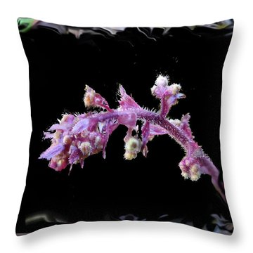 Ipomoea Batatas Throw Pillow
